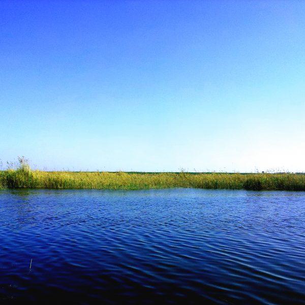 Lake Mariout