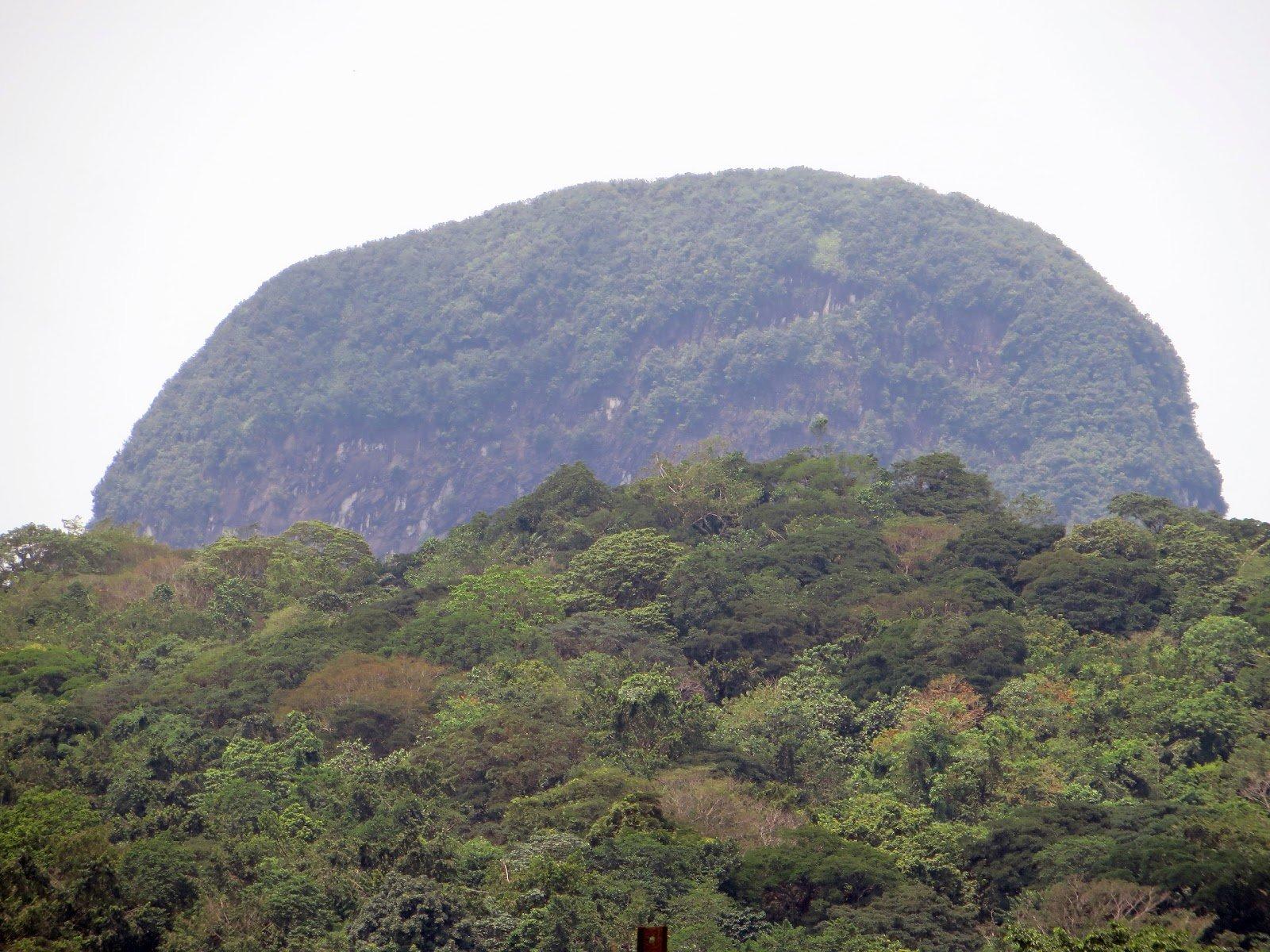 Obo National Park Sao Tome and Principe
