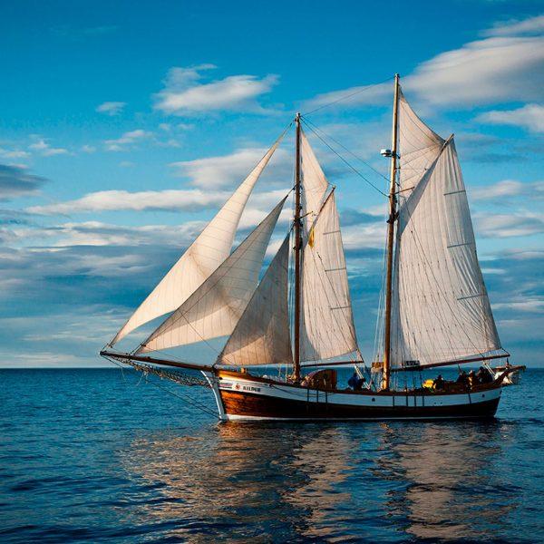 Sahara Sailing Western Sahara