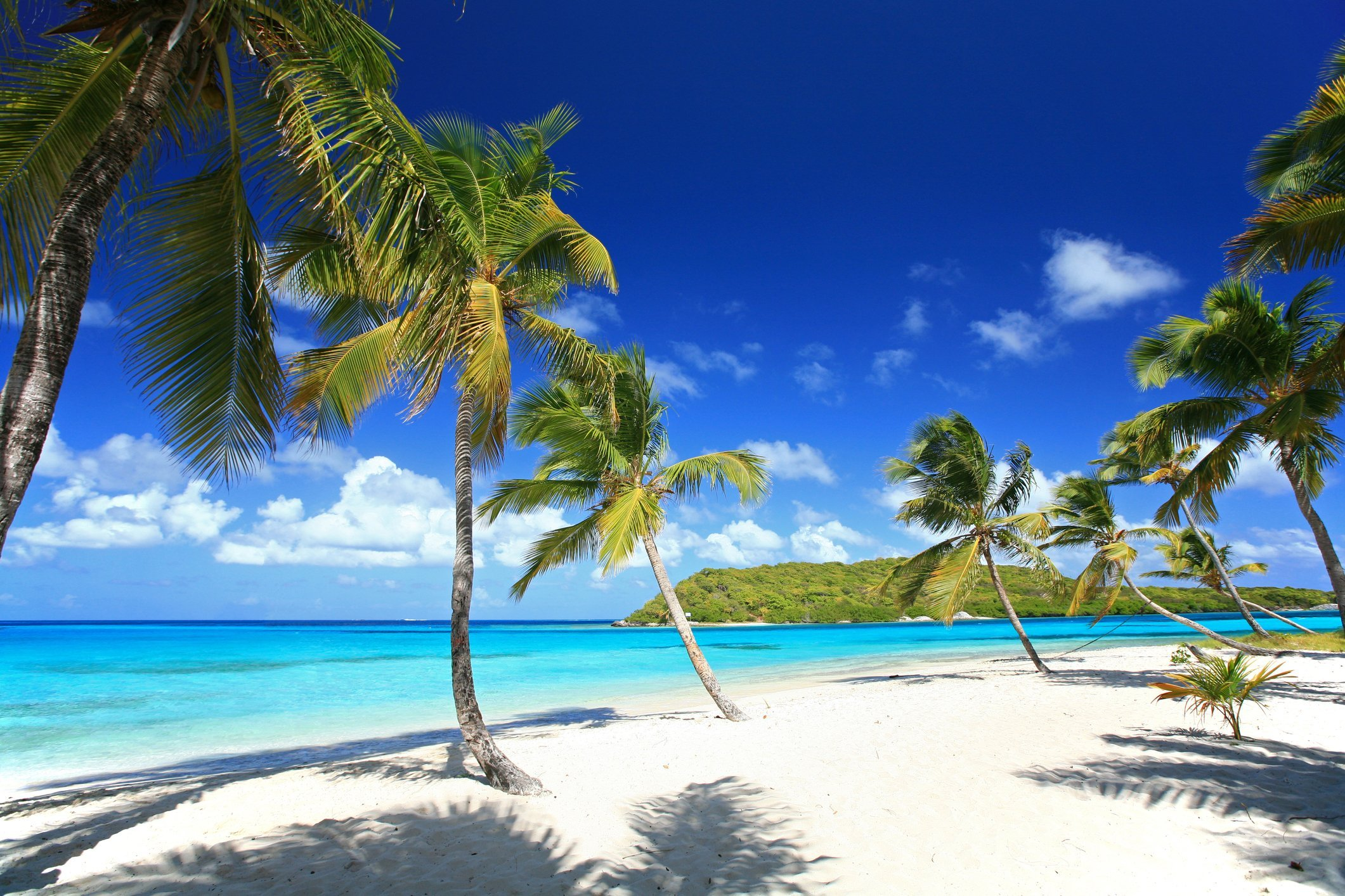 Snorkelling and Sailing in the Tobago Cays Saint Vincent and the Grenadines