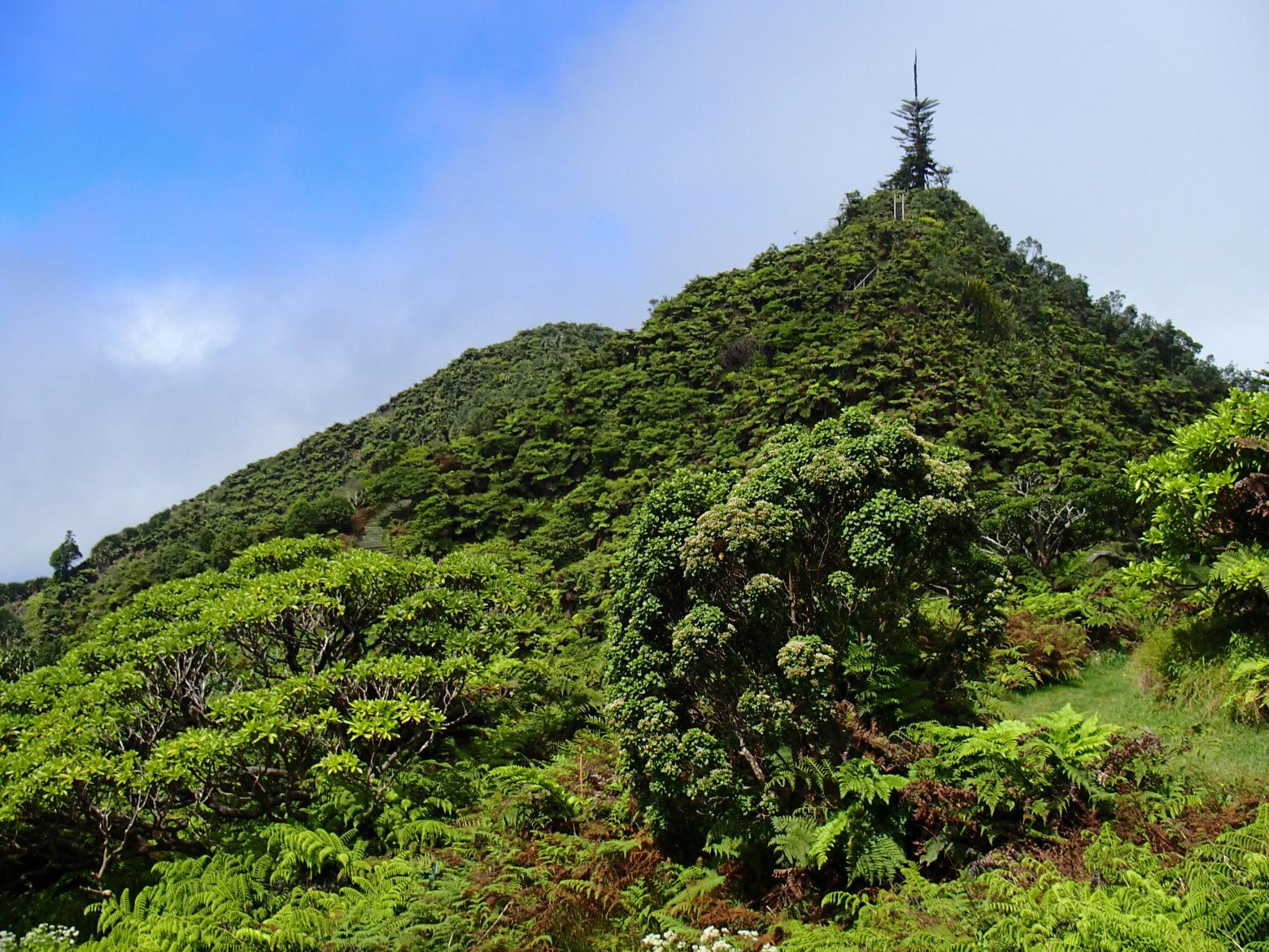 The Peaks Saint Helena